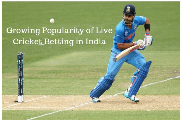 Growing Popularity of Live Cricket Betting in India