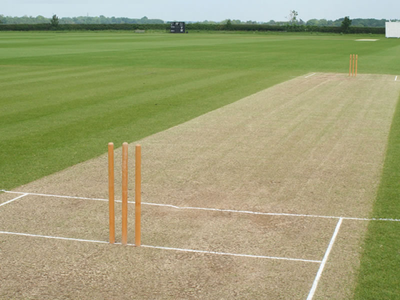 Focus On Cricket Pitch While Doing Cricket Betting