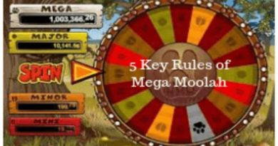 5 Key Rules of Mega Moolah