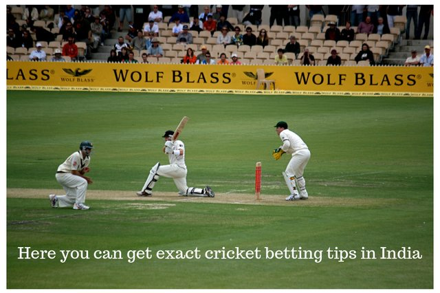 Where can I get exact cricket betting tips in India